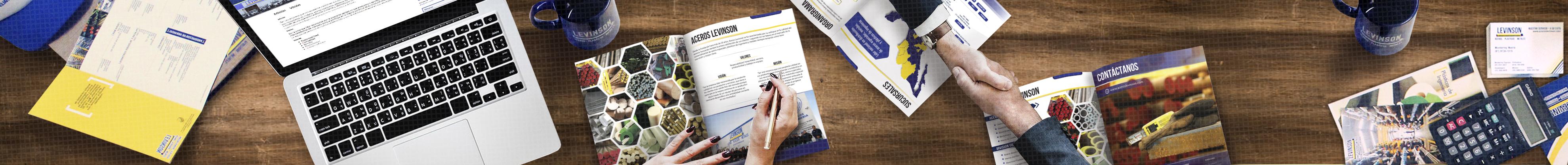 Misión - Visión - Aceros Levinson